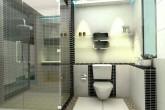 Douche avec parois en verre transparentes dans une petite salle de bain