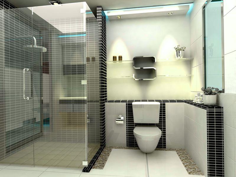 Attrayant Douche Avec Parois En Verre Transparentes Dans Une Petite Salle De Bain